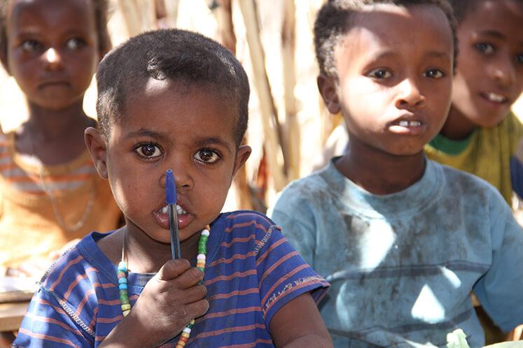 Sudan ELVIS hilft