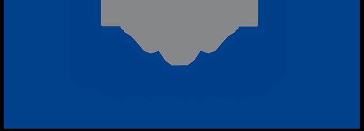 Themis Schaden Logo 750x