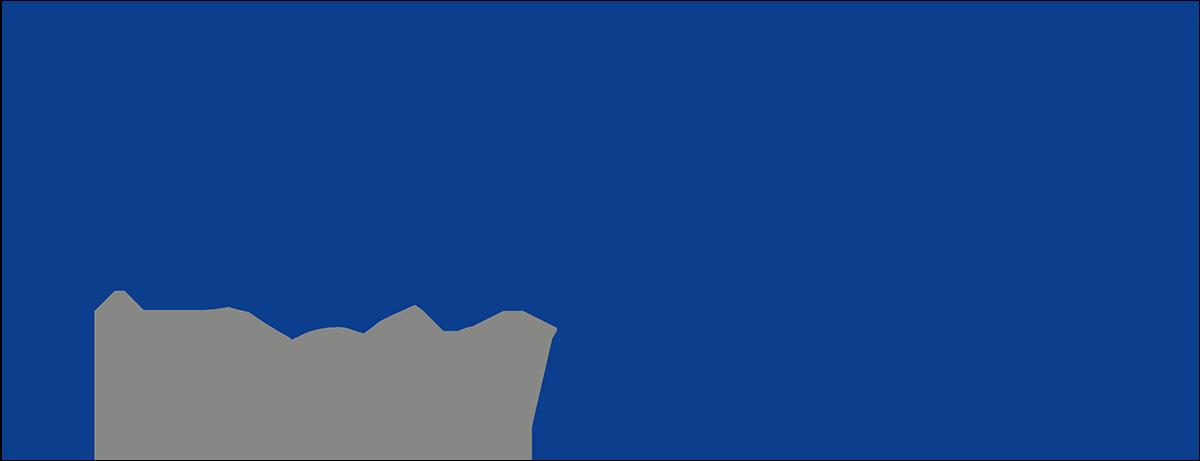 ELVIS Lead Logistics_Logo_1200x